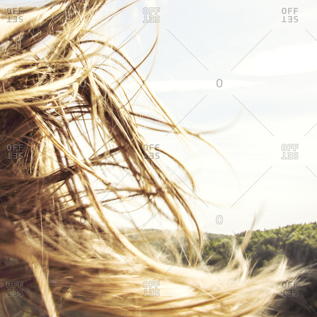 Tangled Hair Of A Young Girl Waving In The Wind