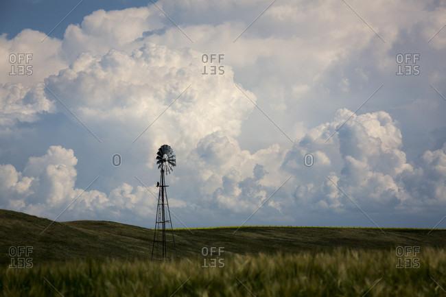 Swainson's Hawk Perching On A Windmill In Alberta, Canada