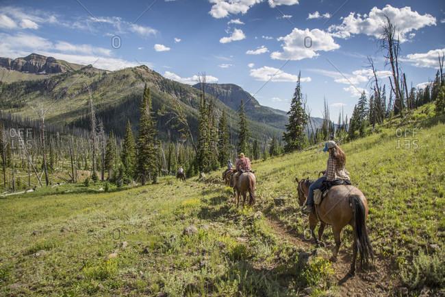 Riders On Horseback In Absaroka-beartooth Mountains, Montana