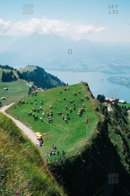 Tourist overlooking Swiss landscape from Mount Rigi