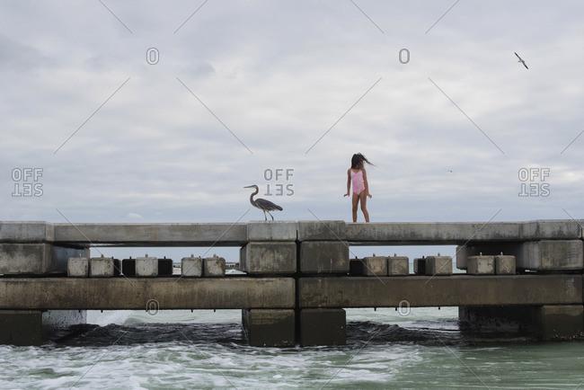Girl on dock by a seabird