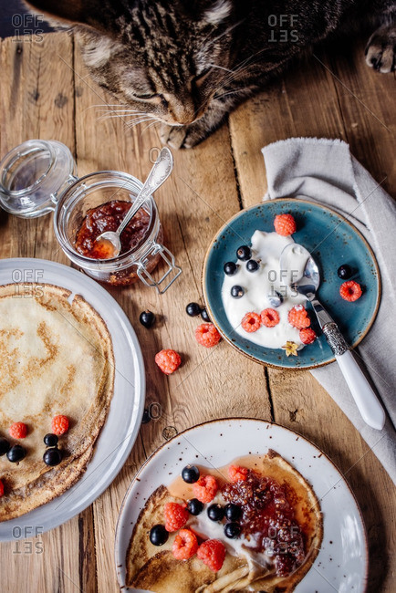 Pancakes with jam and berries served at wooden table where sits the cat