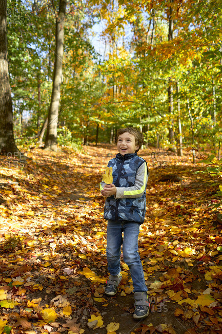 Boy holding autumn leaf in woods