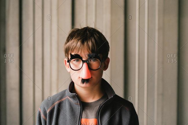 Boy wearing joke glasses