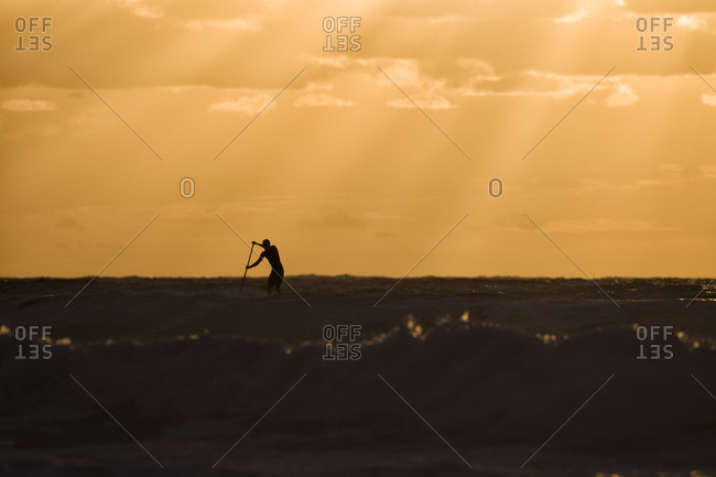 Surfer peddling in the water of the ocean at sunrise at Bondi Beach, one of the most famous beaches in Sydney, Australia
