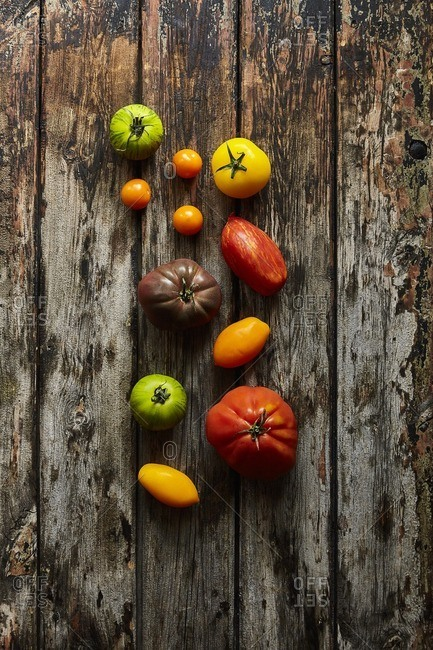 Heritage tomatoes on wood background
