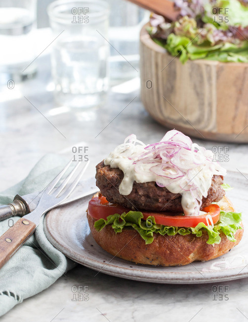 Hamburger on a plate with tomato, lettuce, onion and sauce