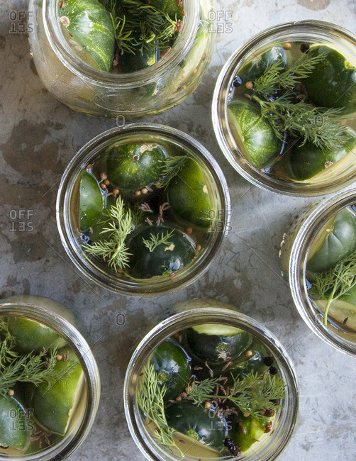 Cucumbers in canning jars for pickles