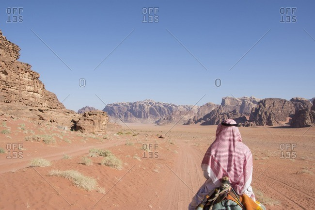 Rear view of man riding on camel in desert against clear sky