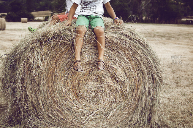 Low section of brothers sitting on hay bale in farm