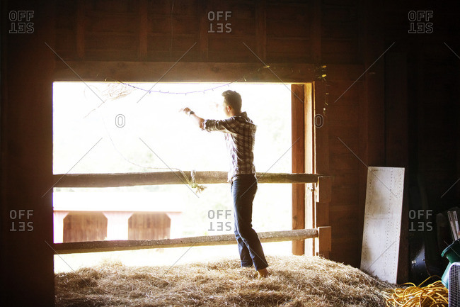 Rancher throwing lasso while standing on grass in stable