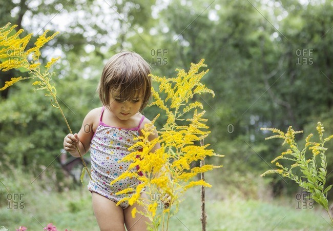 Curious girl picking plants in forest