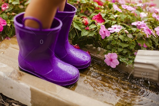 Low section of girl wearing purple rubber boots while standing by impatiens blooming in yard