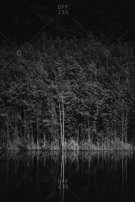 Black and white shoreline of lake