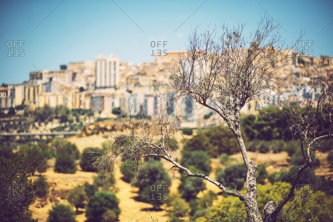 View of Agrigento, Sicily, Italy from the Valley of the Temples