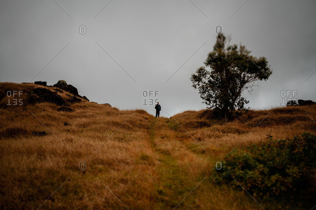 Man alone on top of a hill