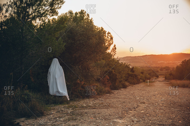 Spooky ghost standing alone in forest at sunset