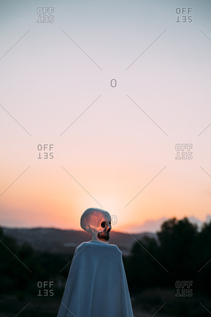 Side view of human skull decoration against red sunset