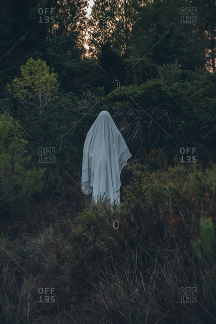 Ghost standing alone in forest