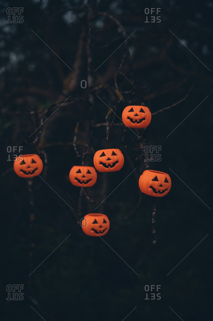 Halloween pumpkin decorations hanging on a tree
