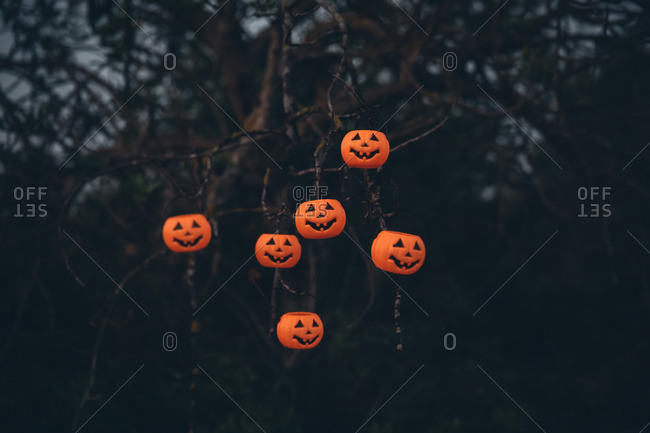 Halloween pumpkins hanging on a tree