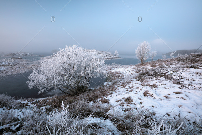 A misty, snow and frost covered landscape on Rannoch moor, Glencoe just before Sunrise