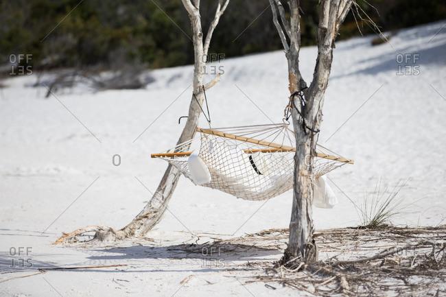 Hammock hanging in coastal area