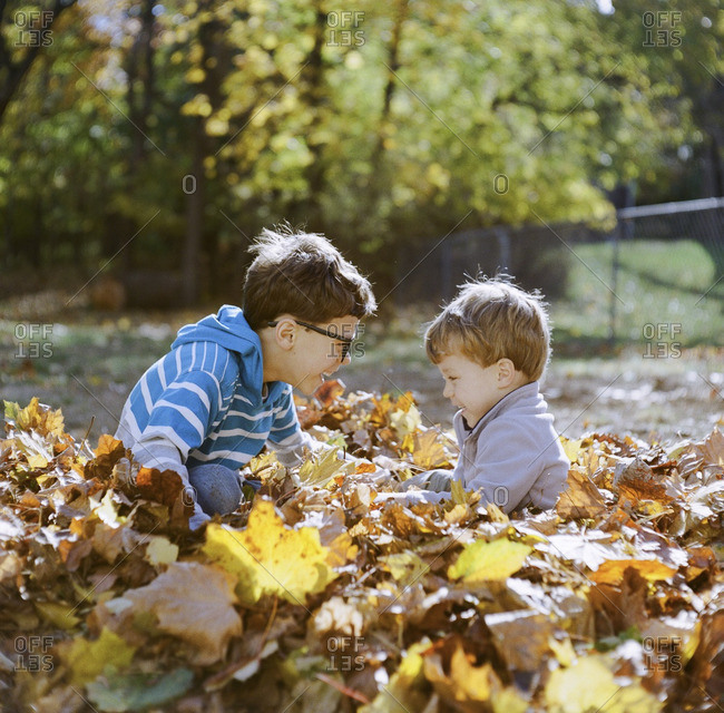 Two brothers playing together in a pile of autumn leaves