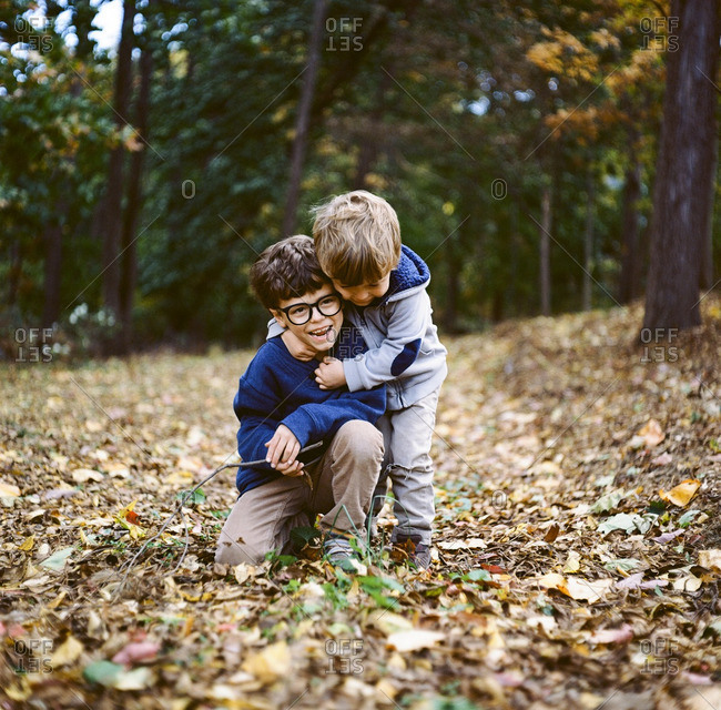 Two brothers playing in autumn leaves
