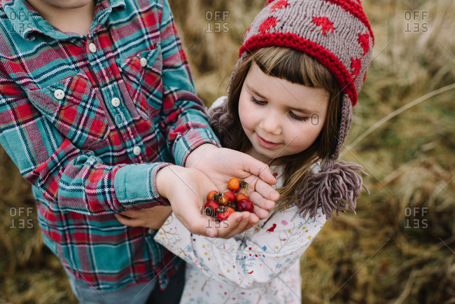 Boy holding wild rose hips with sister