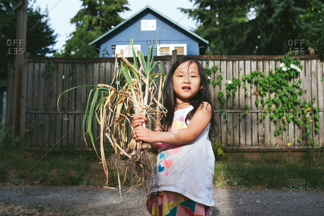 Little girl holding fresh picked garlic plants outdoors