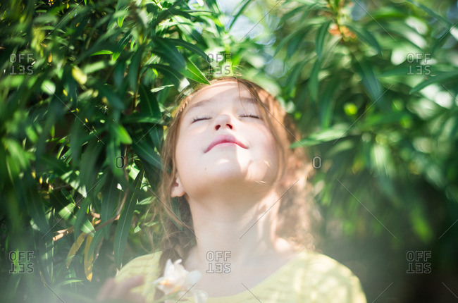 Little girl standing among trees lifting her face to the sky
