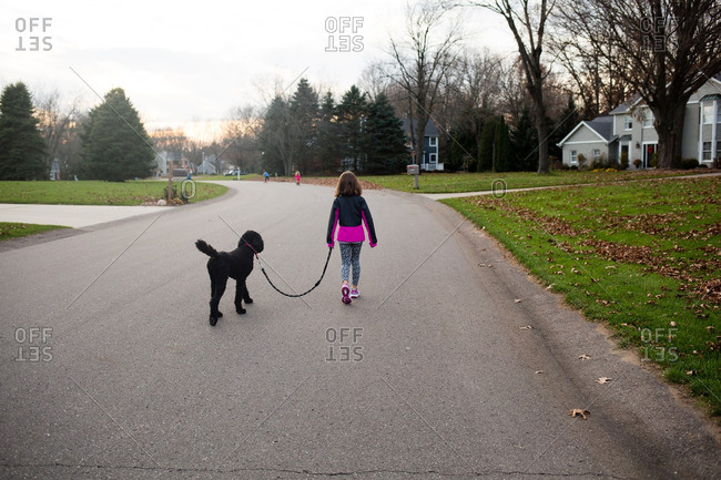 Girl taking her dog for a walk in a neighborhood