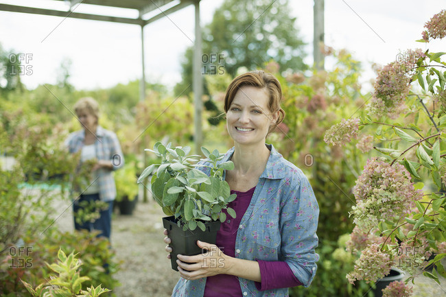Two women working in a planthouse or greenhouse at an organic farm