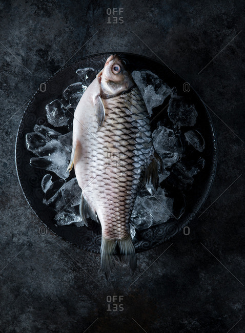 Raw silver barb fish on ice