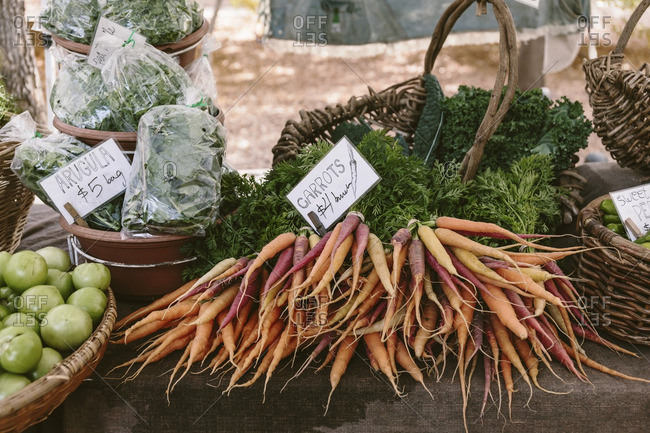 Bunches of carrots, arugula and greens at a farmers market