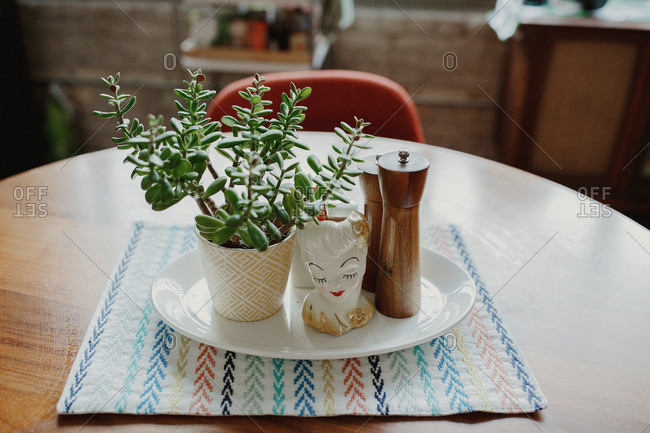 Decorative display with salt and pepper shakers and potted plant on dining table