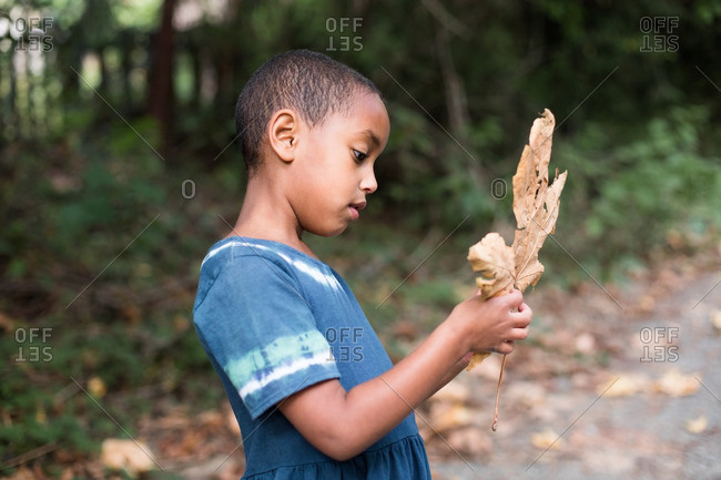 Young girl examining a large dried leaf
