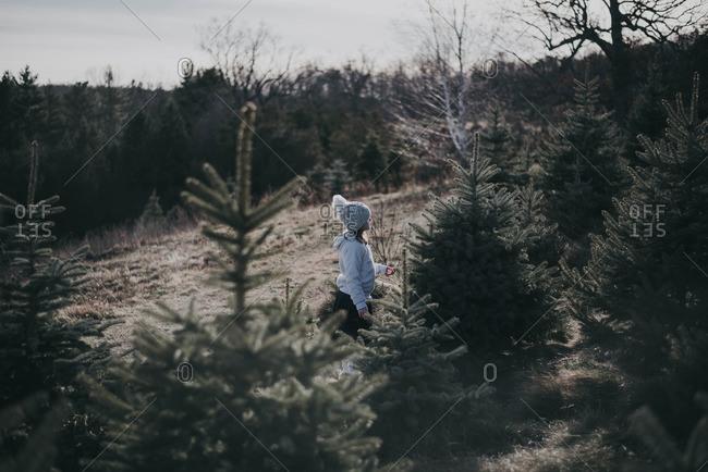 Little girl walking through a tree farm