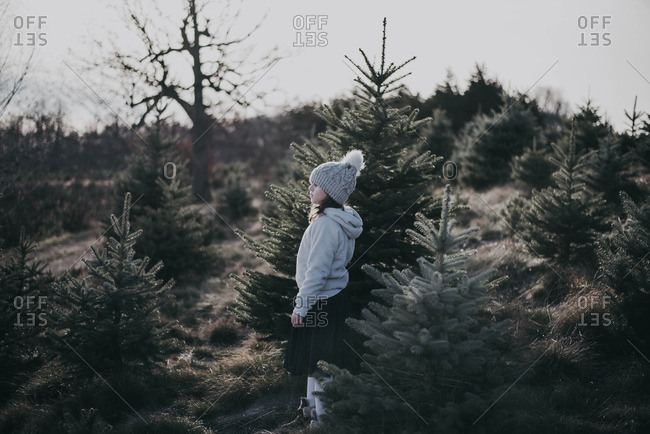 Little girl walking through a forest of pine trees