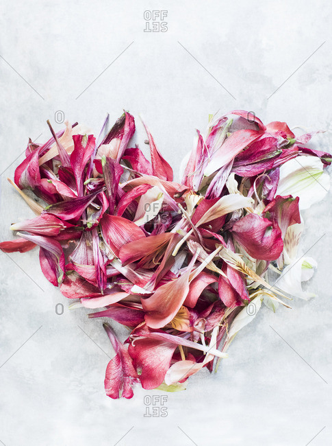 Flower petals in heart shape