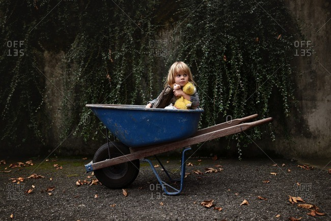 Child in wheelbarrow with stuffed animals and log