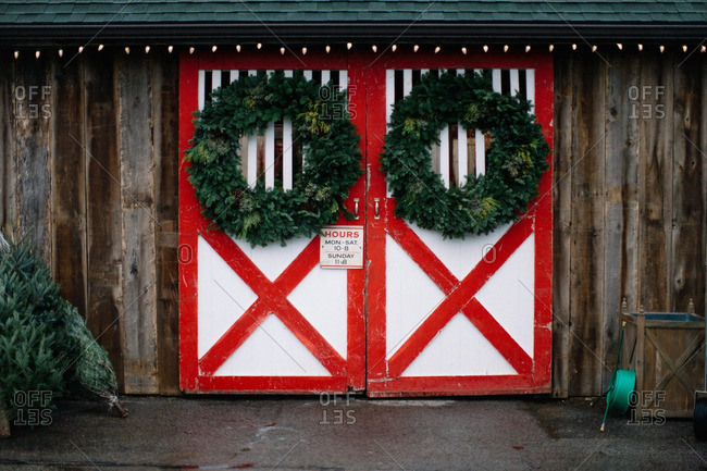 Green wreaths hanging on painted barn doors