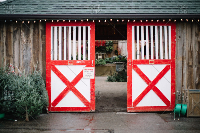 Barn doors opening with Christmas trees