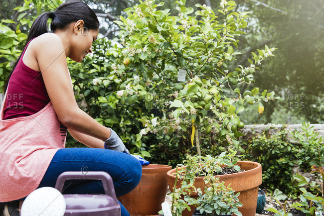 Woman kneeling over potted plant in garden