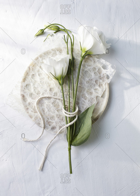 White flowers on a plate with white fibers