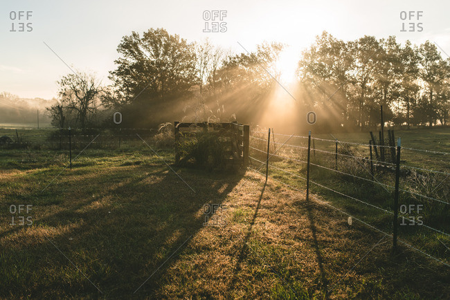 Sunbeams over a farm field