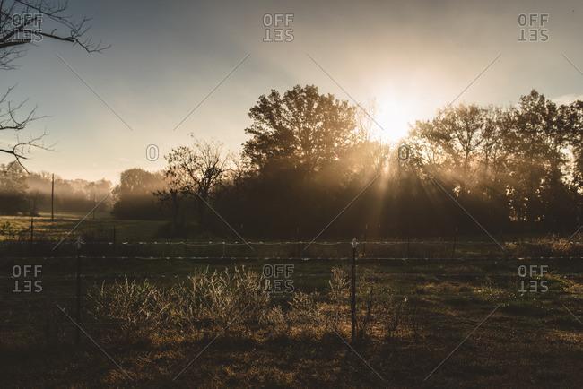 Sunbeams rising over a farm field