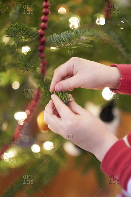 Little boy touching a Christmas tree