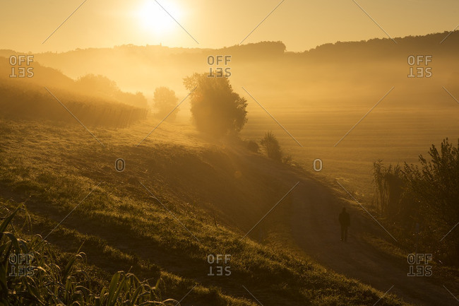 Italy- Tuscany- sunrise in rolling landscape near Lucca